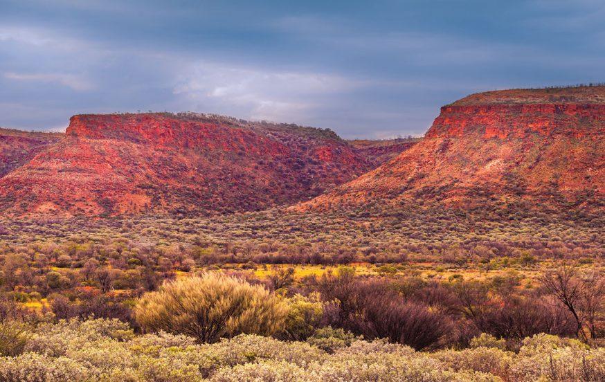 Central-Australia-School-Group-Tours-Watarrka