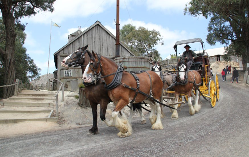 Sovereign Hill horse and carriage
