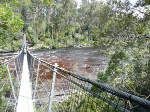 Tahune River Walk, Tasmania Australia