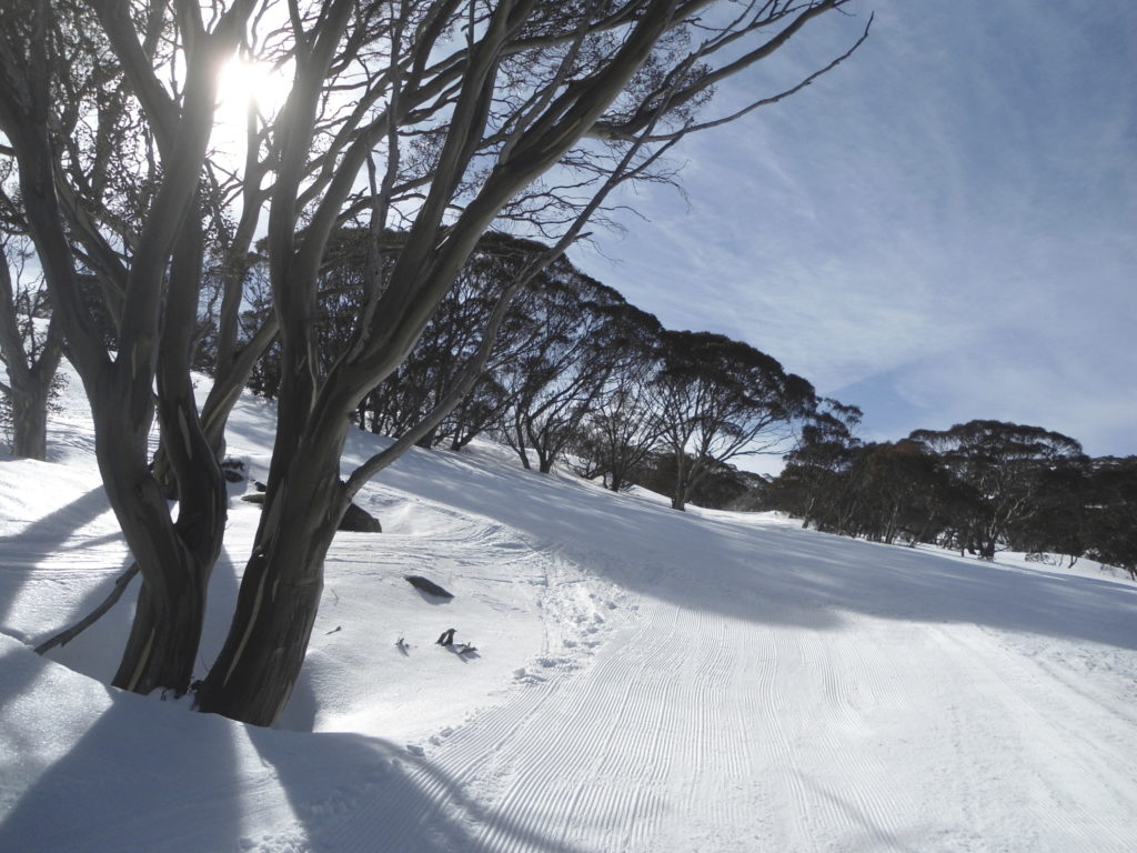 Perisher Valley view NSW Australia